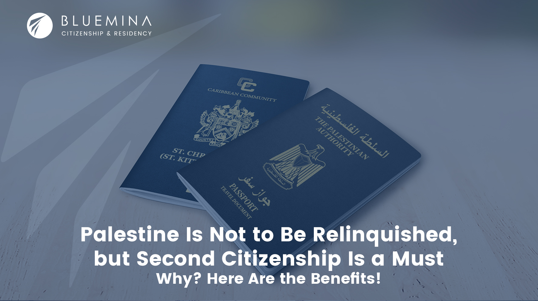 Palestine Is Not to Be Relinquished, but Second Citizenship Is a Must