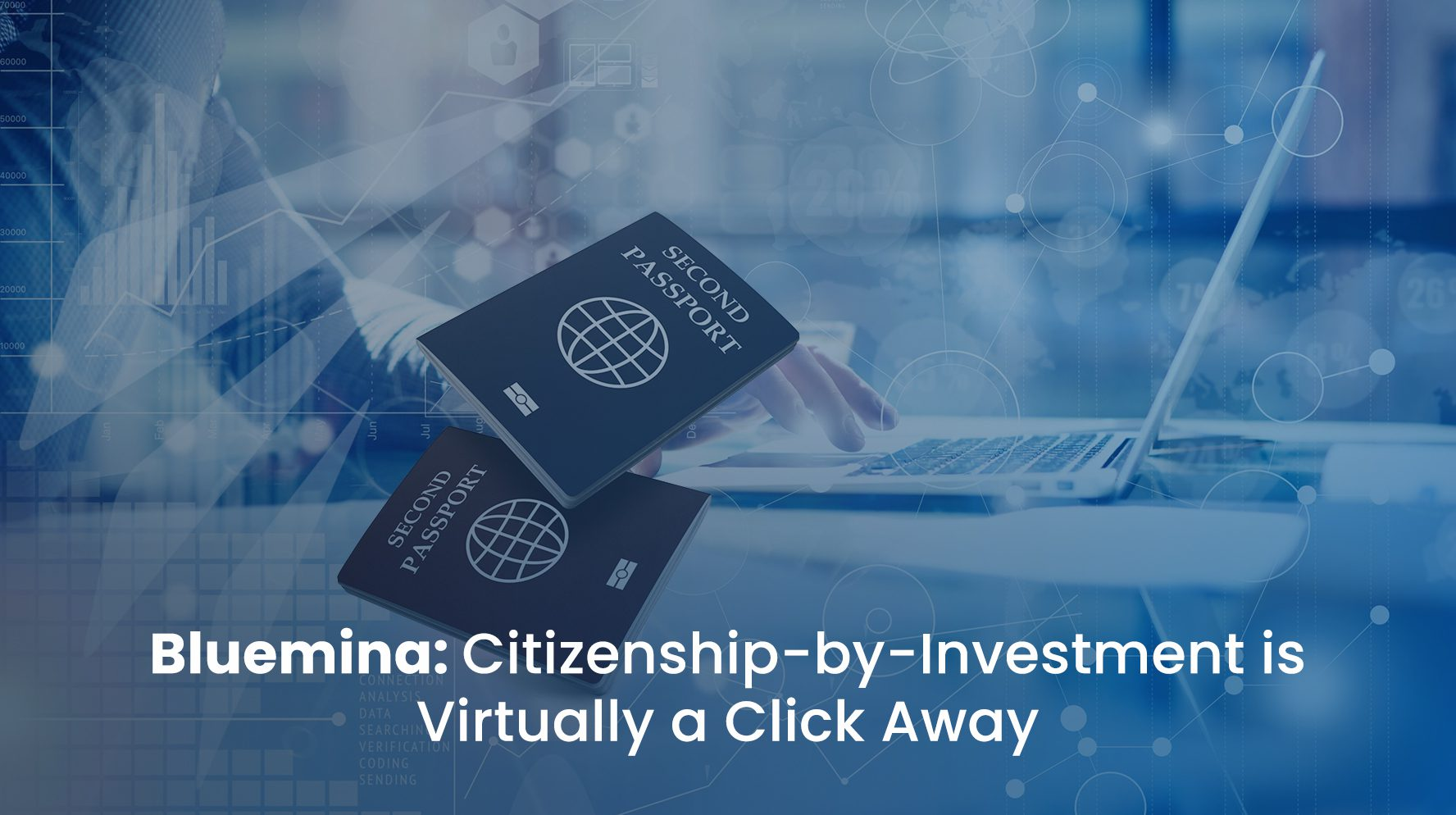Bluemina: Citizenship-by-Investment is Virtually a Click Away
